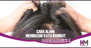 5 Cara Alami Membasmi Kutu Rambut dan Telurnya