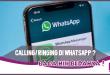 Calling dan Ringing di WhatsApp, Apa Sih Bedanya