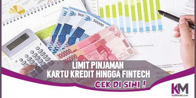 Limit Pinjaman Kartu Kredit hingga Fintech, Cek di Sini!
