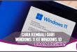 Mudah! Ini Cara Balik dari Windows 11 ke Windows 10
