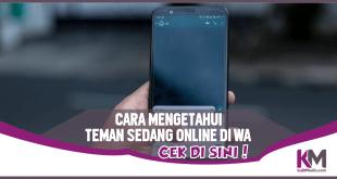 Cara Mengetahui Teman yang Lagi Online di WhatsApp