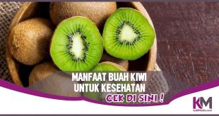 Ragam Manfaat Buah Kiwi untuk Kesehatan Tubuh